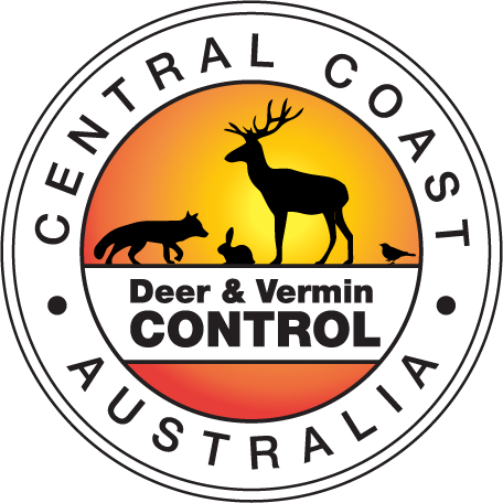 Central Coast Deer and Vermin Control